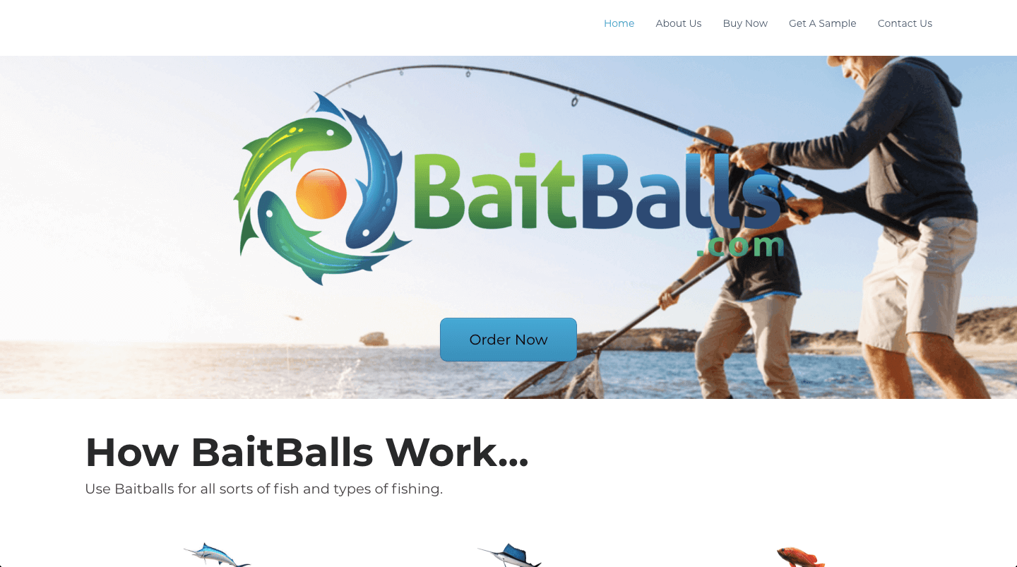 Baitballs.com digital marketing work